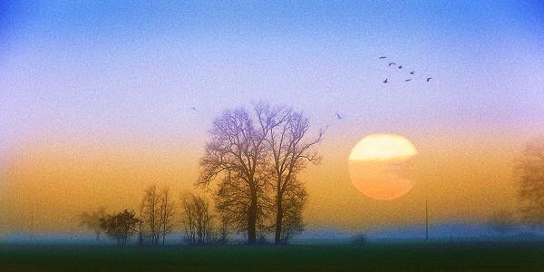 Foto: luci del mattino