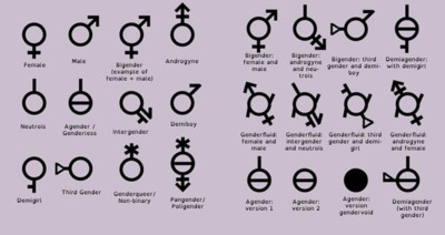 Tabella dei generi secondo teoria gender