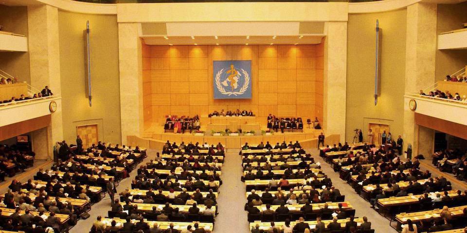 Organizzazione Mondiale della Sanità (OMS)
