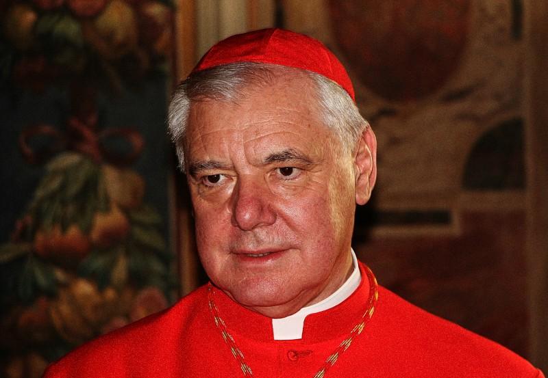 Il cardinale Gerhard Müller (foto Edward Pentin)