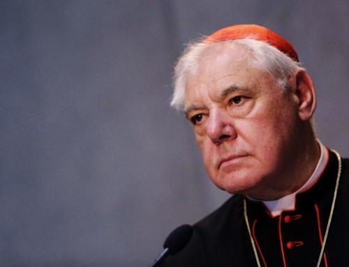 """Cardinale Müller: """"Il concetto nebuloso di clericalismo è l'approccio sbagliato. Con una diagnosi falsa, non si può mai trovare la terapia giusta"""""""