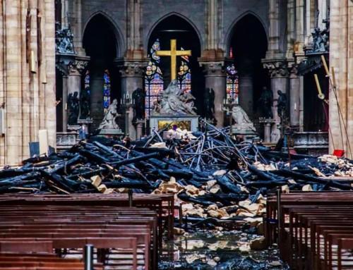 Notre Dame, di 1 miliardo promesso, sono stati raccolti solo 13,5 mln di euro, al momento.