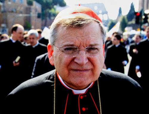 """Card. Burke: """"non è onesto dire che il Sinodo Pan Amazzonico tratterà la questione del celibato clericale solo per quella regione"""""""