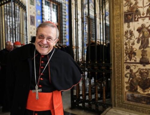 """Card. Kasper: se i vescovi chiedono l'ordinazione di uomini sposati, """"è mio giudizio che il papa lo accetterebbe"""""""