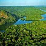 Sinodo dell'Amazzonia: possibilità di ordinazione sacerdotale per uomini sposati