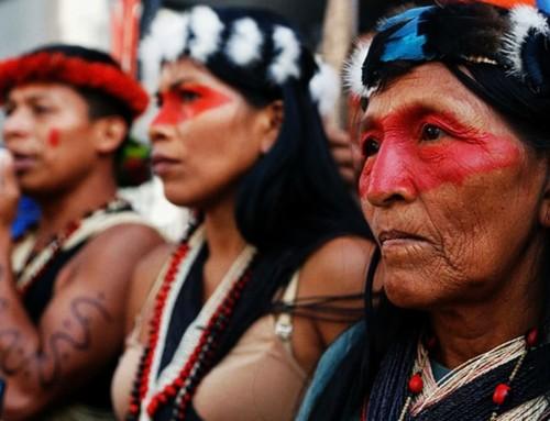 """Meiattini: l'Instrumentum laboris del sinodo dell'Amazzonia è la """"diluizione del cristianesimo ad antropologia, a ecologia, a un cristianesimo biodegradabile""""."""