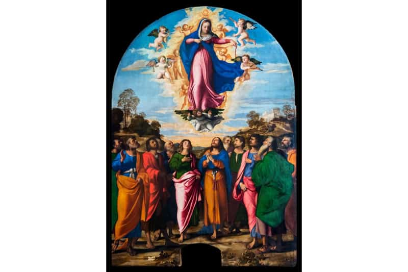 Assunzione della Vergine di Palma il Vecchio, galleria dell'Accademia a Venezia