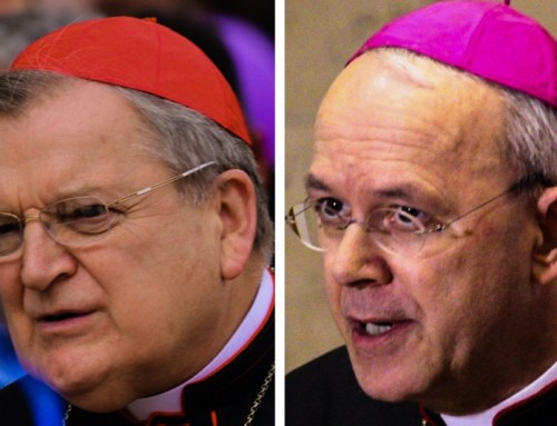 Cardinale Burke, vescovo Schneider: La critica degli errori è fedeltà al Papa