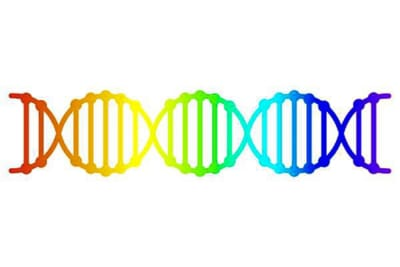 Gene gay (Shutterstock via CNA)