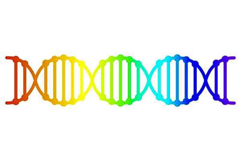 Gene gay (Shutterstock via CNA)