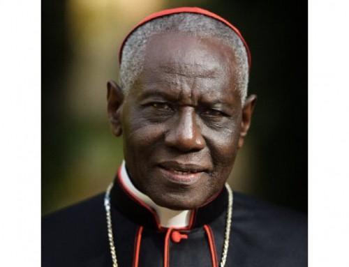 """Sarah: """"Prego i cattolici che sono tentati dall'omosessualità di non lasciarsi rinchiudere in questa prigione dell'ideologia LGBT"""""""
