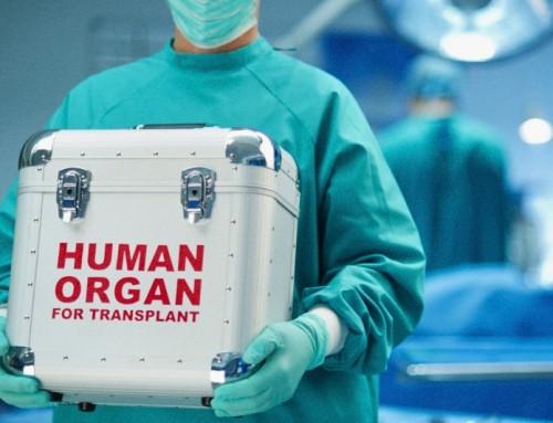 Il suicidio assistito di canadesi malati sta creando un boom di donazioni di organi. Sembrerebbe una bella notizia, ma non lo è.
