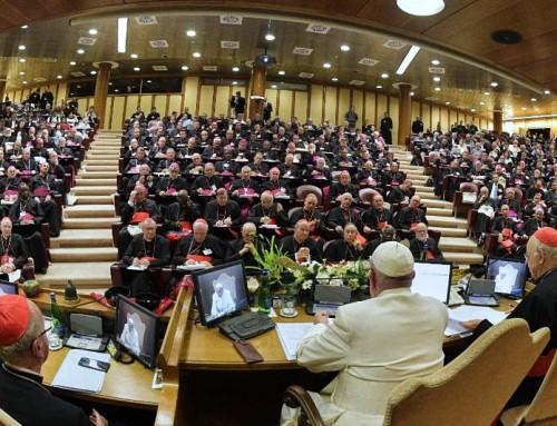 Cosa dirà il documento post sinodale sull'Amazzonia riguardo al celibato?
