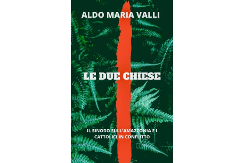 Valli libro Le due chiese