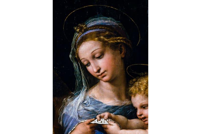 Raffaello, Madonna della rosa - particolare
