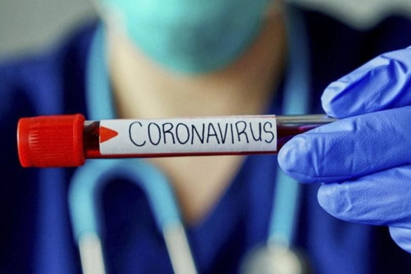 coronavirus provetta