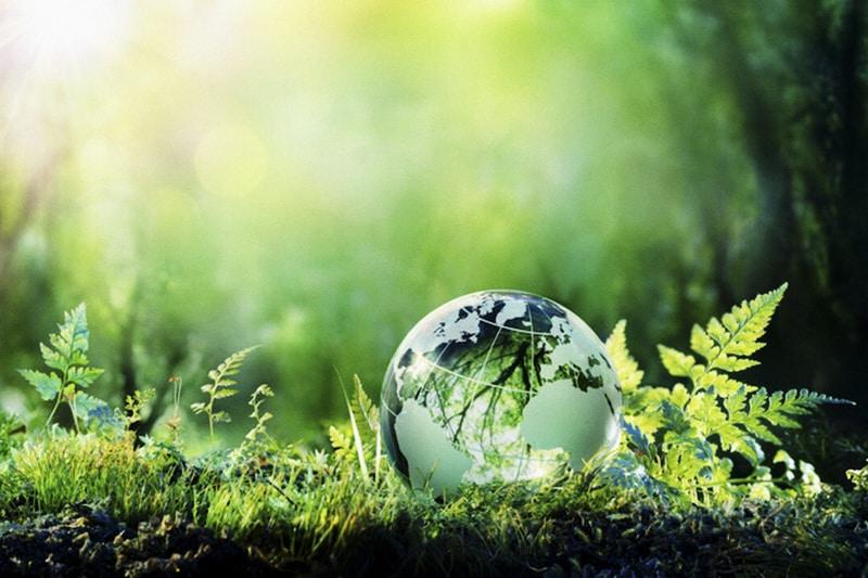 ambiente ambientalismo