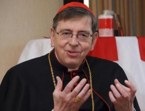 """Il cardinale del Vaticano: Papa Francesco è """"preoccupato"""" per la Chiesa in Germania"""