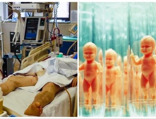 Occultamenti, deformazioni e rifiuti del nascere e del morire