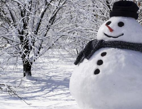 Il DDL Zan spiegato con un pupazzo di neve