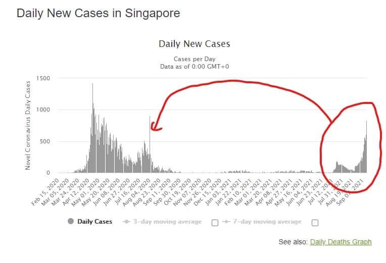 Singapore, nuovi casi giornalieri di contagiati covid