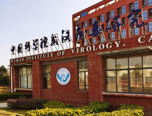Emergono nuovi dettagli sulla ricerca sul coronavirus nel laboratorio cinese